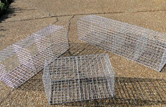 Global Gabion Boxes Market 2018 Segmented Market Growth Till 2023